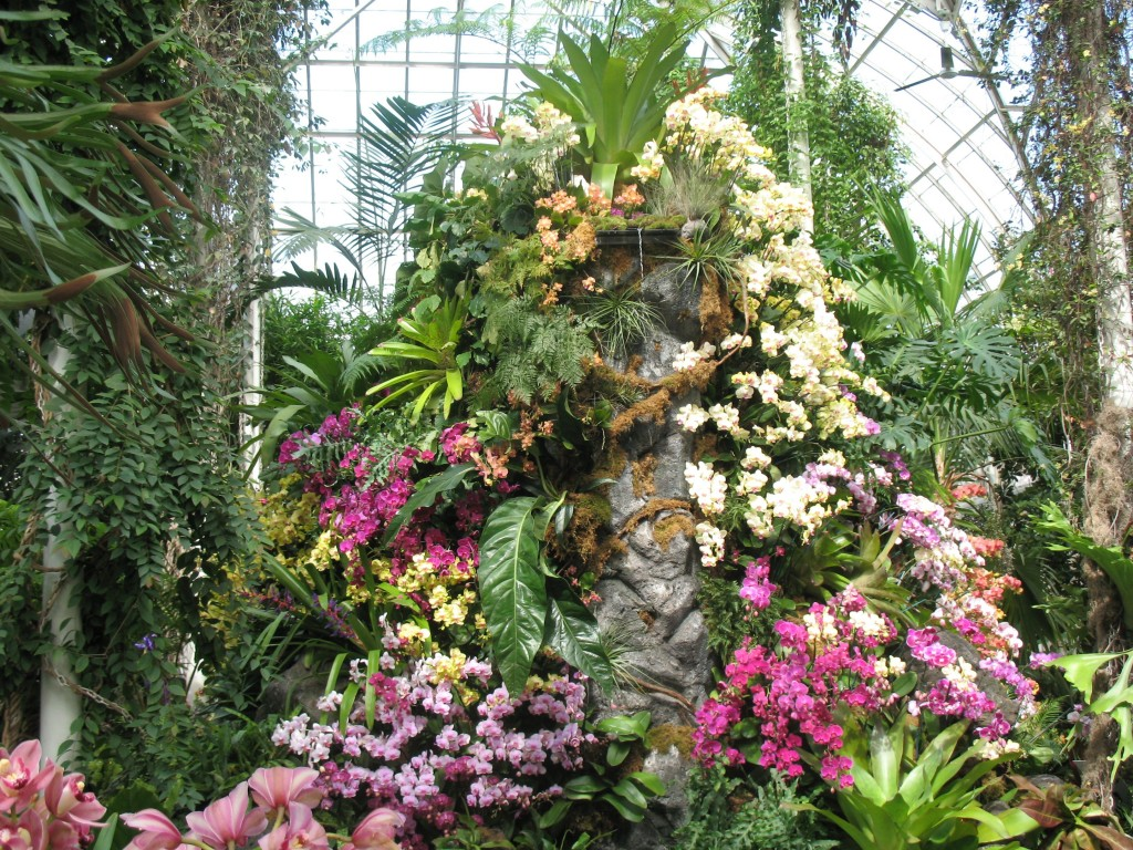 nybg_The centerpiece of the 'Orchidelirum' show is a recreation of a mountain of volcanic rock, complete with%2