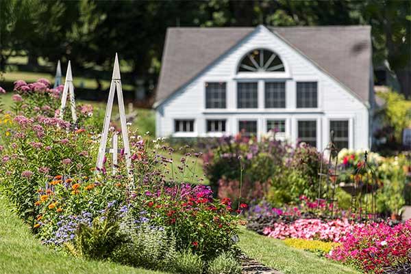 September 2016 white flower farms blog the end of summer at white flower farm mightylinksfo
