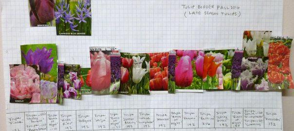 Bulb Planting Planning