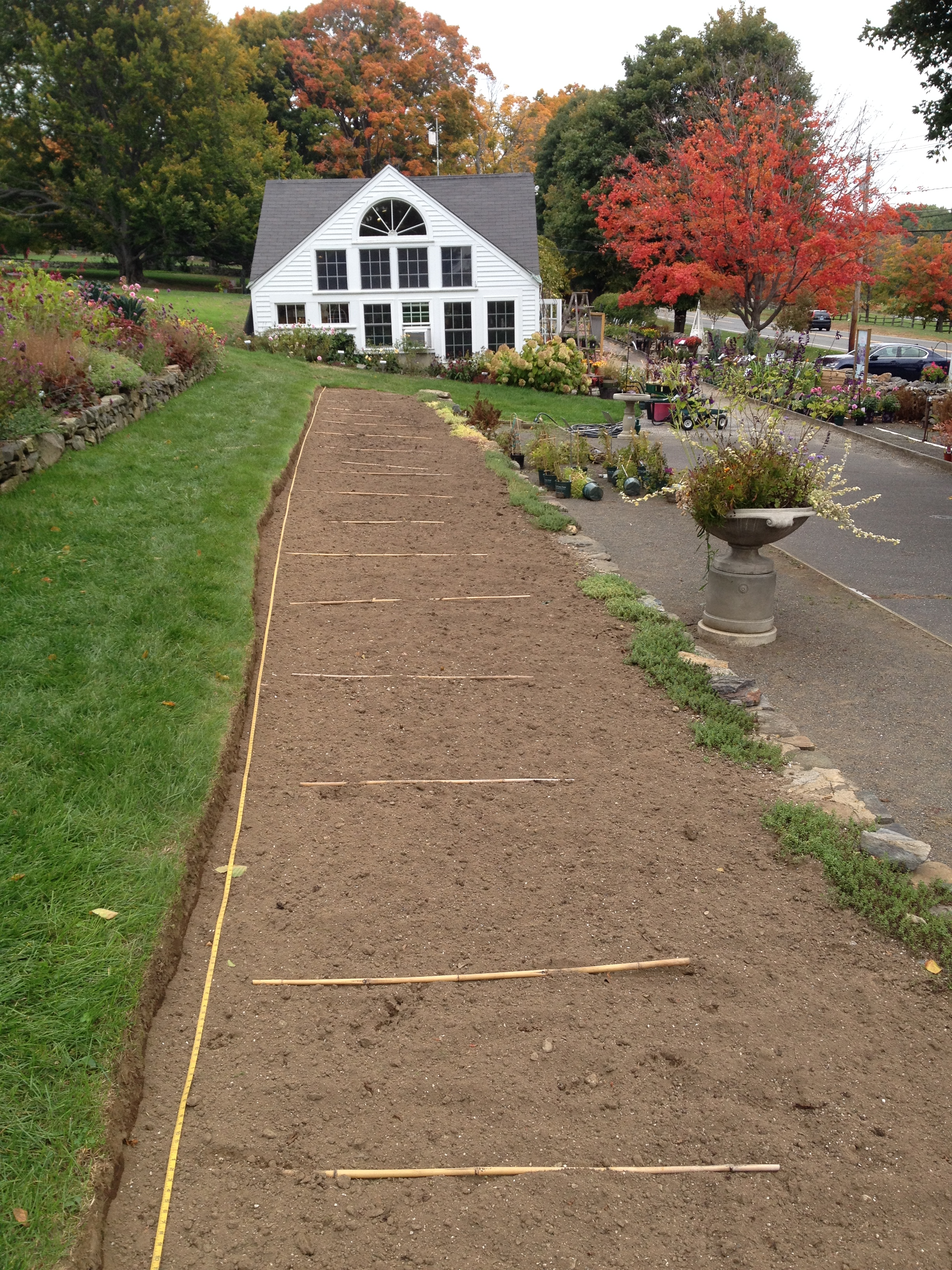 measuring-tape-and-bamboo-poles-are-used-to-lay-out-the-design-for-the-tulip-border