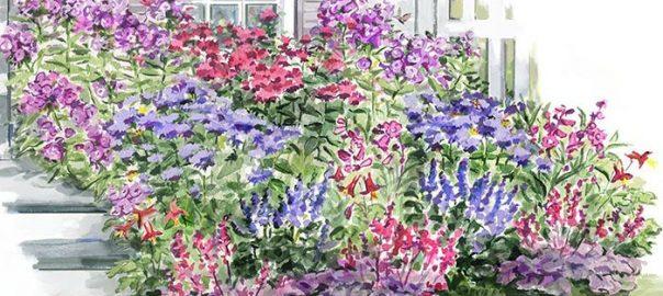 Long-Season Hummingbird Garden