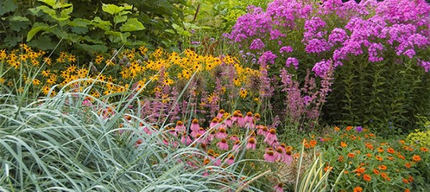 The Art Of Gardening Successful Plant Combinations White Flower