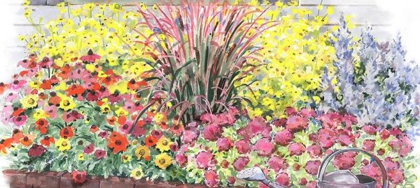 Late Season Perennial Garden
